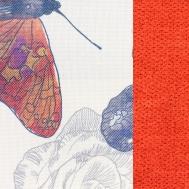 BUTTERLY 05 oranžová
