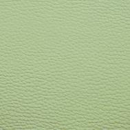 BR16 světle zelená