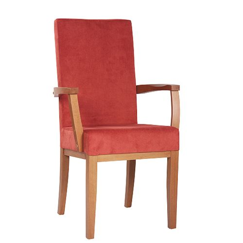 Čalouněná židle ELISA H ALE