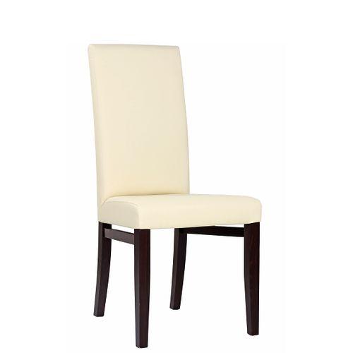 Čalouněné odolné židle RINA více barev čalounění
