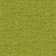 filc barva kiwi