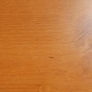 borovice medová Tirol