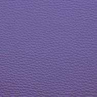 BR35 fialová