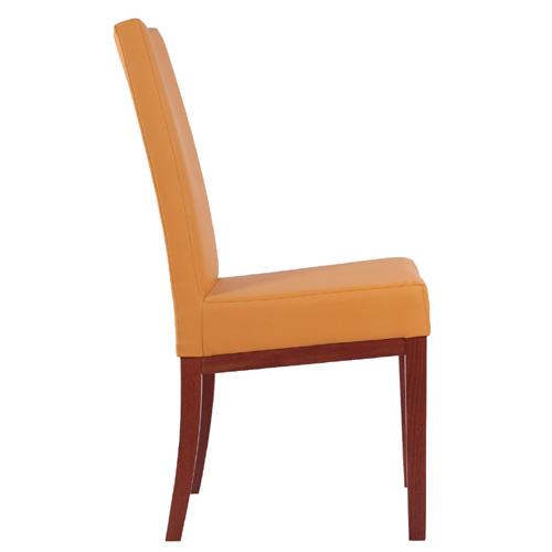 Jídelní pohodlní židle
