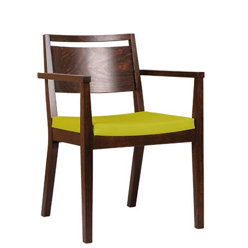 Židle čalouněná s područkou LUCAS P AL